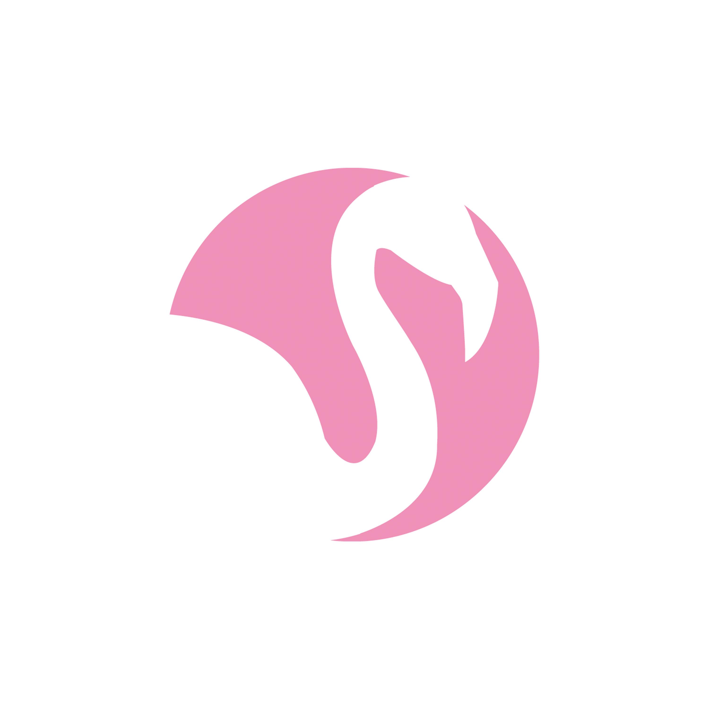 Logo_flmng