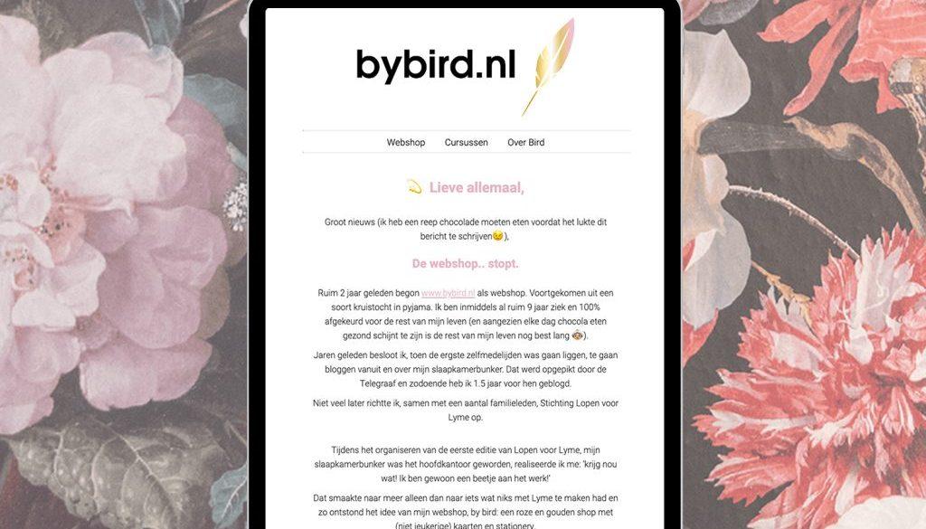 Nieuwsbrief ontwerp bybird.nl